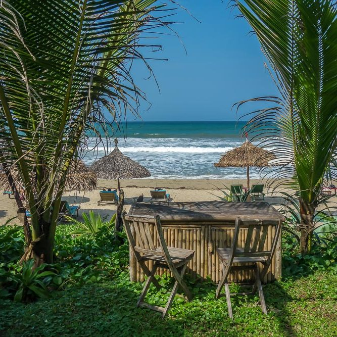 La Plage, palms, An Bang Beach, Hoi An. Best Bars in Hoi An